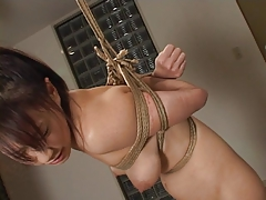 Bdsm Spanking Japanese Domination